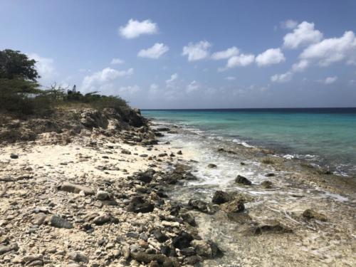 From the turtle nesting beach.
