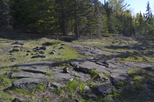 A view of the trail. See the cairn?