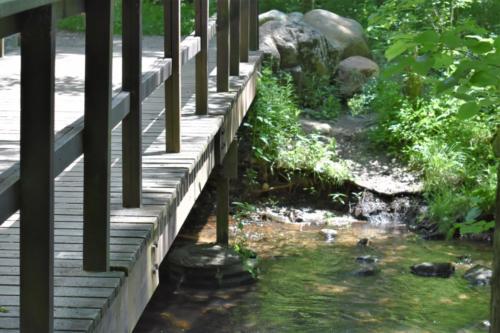 The bridge over the stream, near the south trailhead.